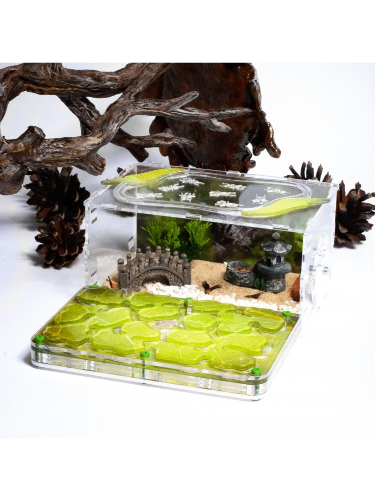 """Skruzdėlių ferma """"Green Nature Full Decor"""""""