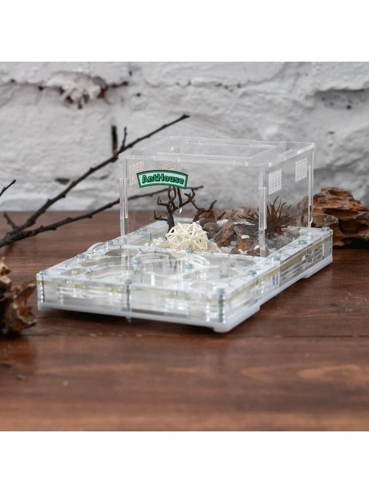 "Skruzdėlių ferma ""Bio Dry Land"" M + skruzdėlės"